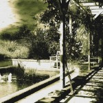 Le jardin de Pampelune