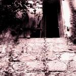Une lumière a couru sur le lierre et la pierre