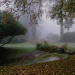 Au jardin de l'automne (suite)