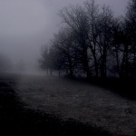 Sur les terres glacées de ton cœur